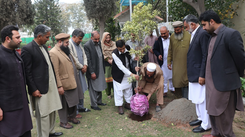 Vice Chancellor UoP Prof. Dr. Muhammad Idrees inaugurates spring plantation in the compound of University's guest house.