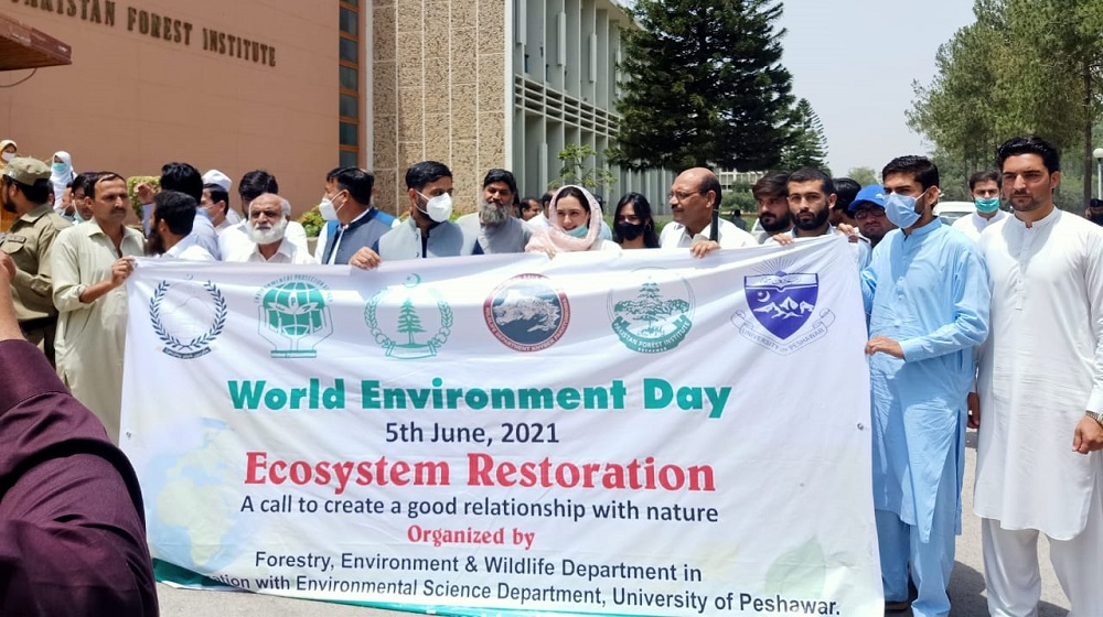 World Environment Day observed by Department of Environmental Sciences and Pakistan Forest Institute in collaboration with Forest Department and Wild Life.