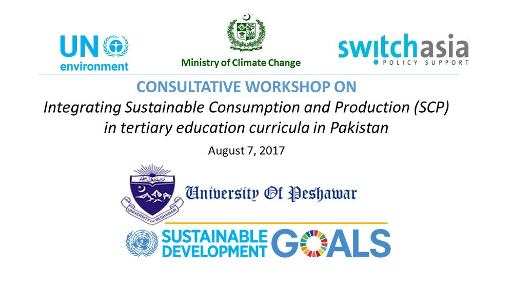 Consultative Workshop on Integrating Sustainable Consumption and Production in Tertiary Education Curricula